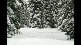 Backcountry Skiing -Canada 2002
