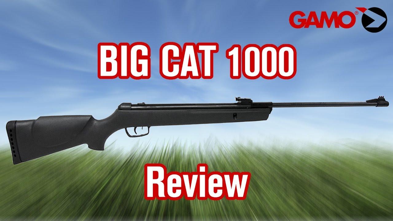 Gamo Big Cat  Review