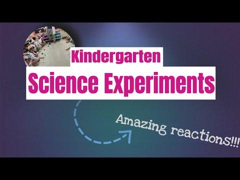 Science Experiments In The Kindergarten Classroom