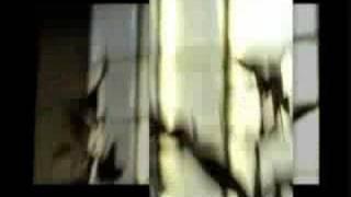 Karkwa - Vrai - [vidéoclip officiel] music video