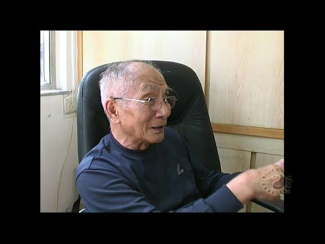 Grandmaster Ip Chun's Wisdom   pt4