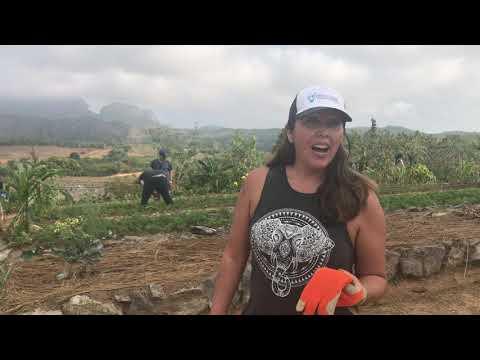 Educator Interview Cuba