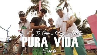 Watch Toledo Pura Vida Seeds feat Pipo Ti Crypy  D Carter video