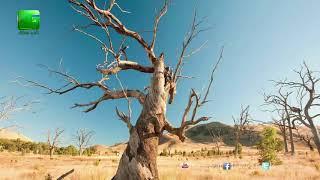 जलवायु परिवर्तन का कृषि उत्पादो पर असर | जलवायु परिवर्तन से भारत बहुत ज्यादा प्रभावित