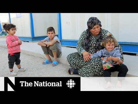 CBC News: The National: Syrians seek refuge from attacks in northern Iraq