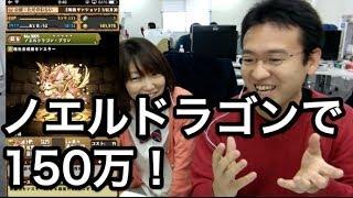 【パズドラ】ノエルドラゴン(プレゼントBOX)で150万経験値!! thumbnail