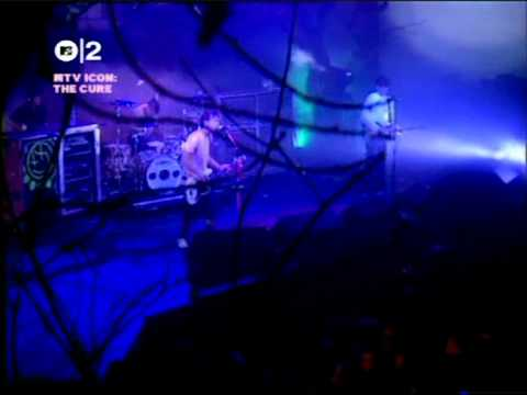 Rare blink-182 A Letter To Elise (Cure Cover) MTV Icon 2004