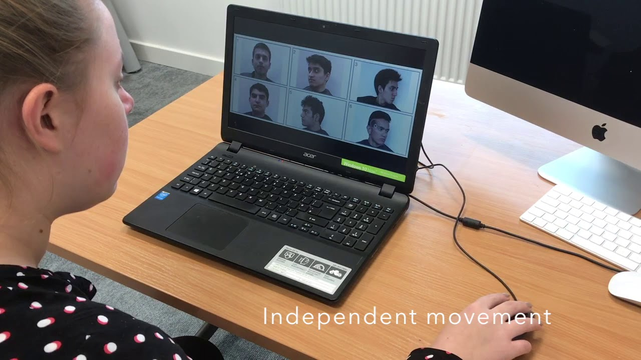 New Pre-prints on an Interactive Face Recognition System