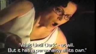 """1995 """"Copycat"""" TV commercial"""