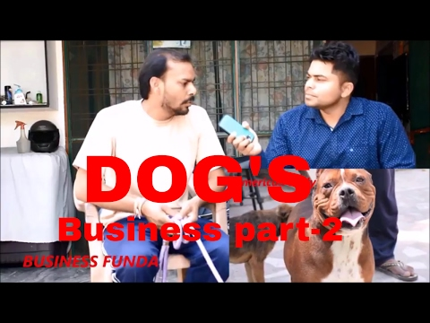 DOG'S BUSINESS LOW INVESTMENT AND HIGH EARNING PETS BUSINESS