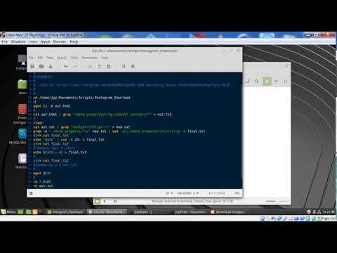 Download Instagram Videos Via Linux Bash Script Example