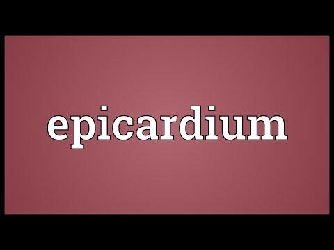 Epicardium Meaning