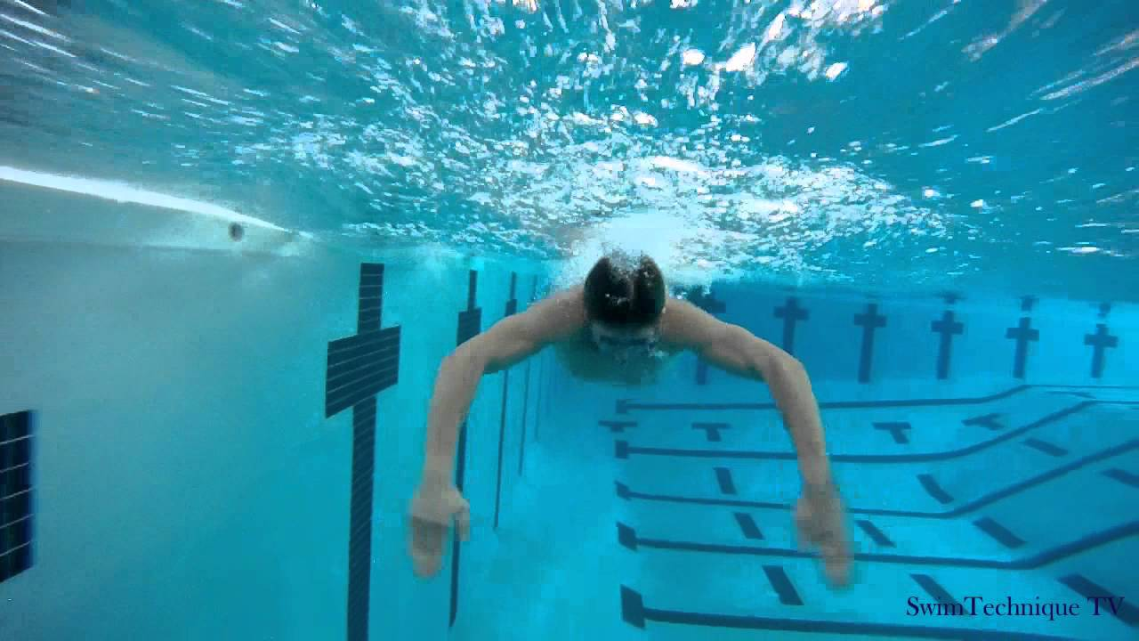 Butterfly Swimming Technique - How to swim butterfly