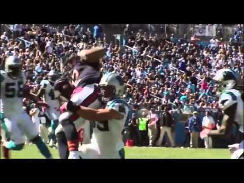 Carolina Panthers 2014-2015 SALUTE