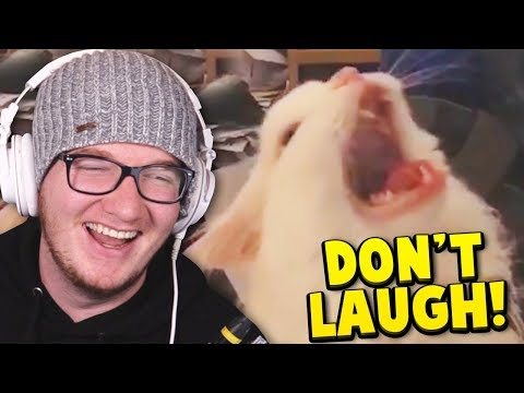 You LAUGH You SUBSCRIBE! (Try Not To Laugh #8)