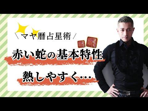 【マヤ暦占い】赤い蛇の特性とは?実は・・・松岡修造さんのように情熱的でエネルギッシュ。【マヤ暦講座】