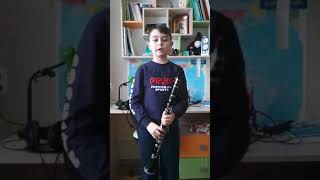 Новое видео на кларнете (Марш,Весёлый лагерь)
