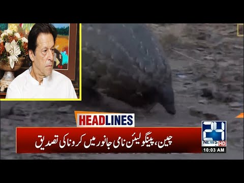 10am News Headlines | 28 March 2020 | 24 News HD