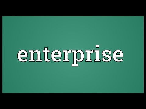 Enterprise Meaning