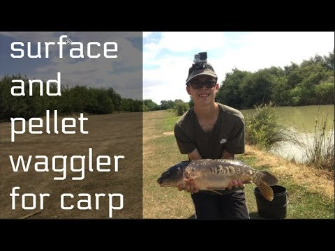 CARP FISHING Surface And Pellet Waggler Fishing (Eye Kettleby Lakes)