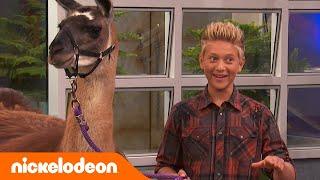 Игроделы Лама Лама Плюй Плюй Полный эпизод Nickelodeon Россия