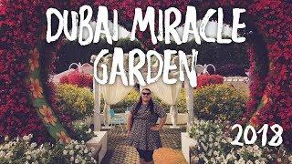 Miracle Garden Dubai 2018 & Yellow Boat Tour   Dubai Vlog