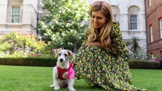 Downing Street Puppy: Boris Johnson And Carrie Symonds Welcome Rescued Jack Russell Called Dilyn