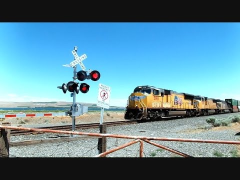 Union Pacific Intermodal Train Travels Along The Columbia River