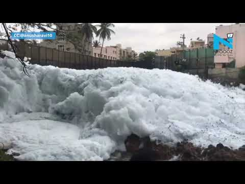 Bengaluru: Bellandur lake's toxic snow on rise, forms 10 feet high froth
