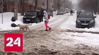 Снегопады в Кирове оставили дома тысячи школьников - Россия 24