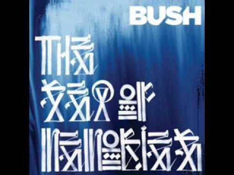 bush-little-things-acoustic-chevellion7