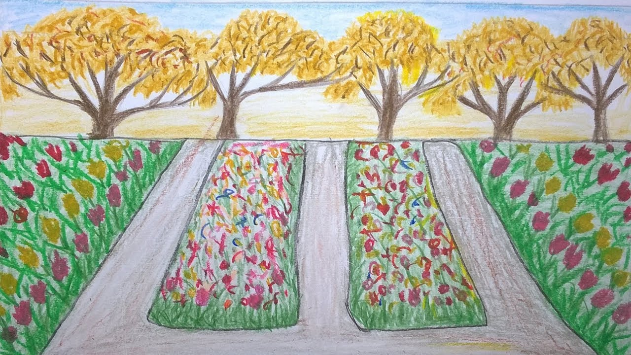 How to draw a garden