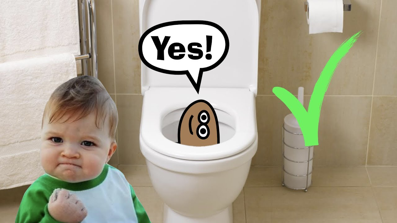 Potty Training Video (Funny) | Poo In The Loo