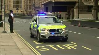 UK Police Arrest Man in Parliament Crash