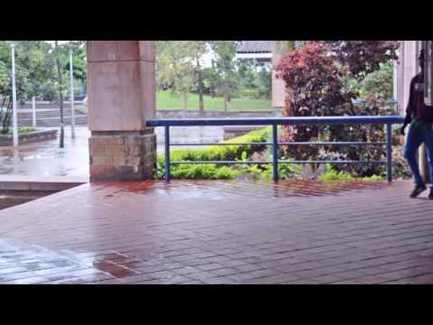 YCEE- OMO ALHAJI DANCE CHOREOGRAPHY