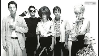 The B-52's History Of - With the Wild Crowd mini documentary and live show on DVD