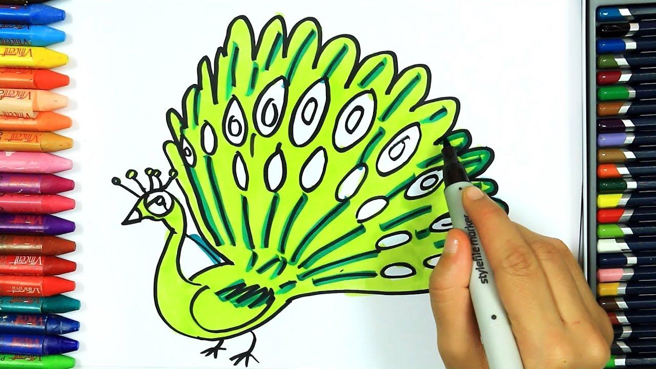 Kolorowanki jak narysowa kolorowy paw rysowanie dla for Coniglio disegno per bambini