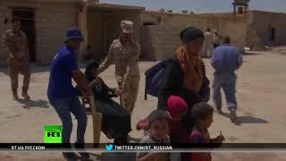 Жители иракского Талль-Афара бегут от перекрёстного огня — Норвежский совет по делам беженцев
