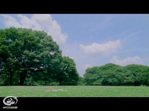 くるり / 魔法のじゅうたん  【Music Clip】