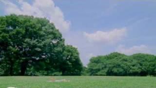 くるり - 魔法のじゅうたん