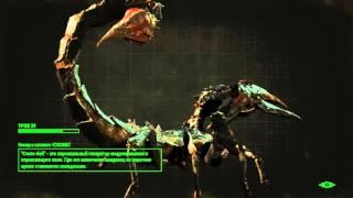 Fallout 4 - Роковые яйца 33