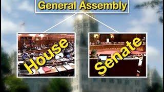 Making Your Voice Heard - The Legislative Process