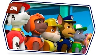 Paw Patrol Videos   Brave Rescuers Puppies The Best Moments