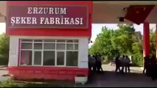 Erzurum Şeker Fabrikası işçileri özelleştirme sonrası işten atıldı