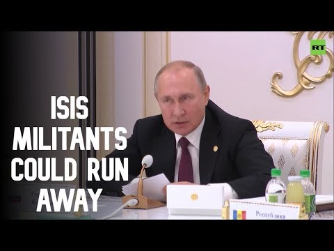 Turkey's Syria op could see ISIS terrorists scattering - Putin