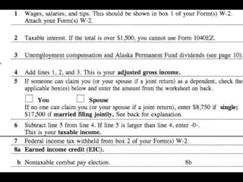 Worksheets 1040ez Line 5 Worksheet how to complete a 1040ez tax form tips for line 5 make tropical flower arrangement