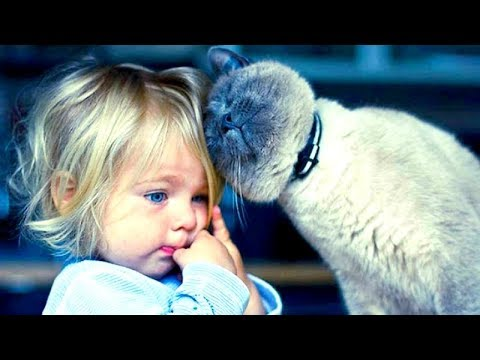 "KIDS & BABIES imitating CATS with ""MEOWING"" - CUTENESS OVERLOAD; try not to get DIABETES!"