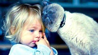 KIDS & BABIES imitating CATS with