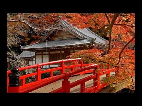 Traditional Japanese Music - Koto & Shakuhachi Lullaby - Part 01