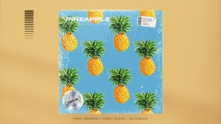 Free Lovely Chill R&B Type Beat Pineapple